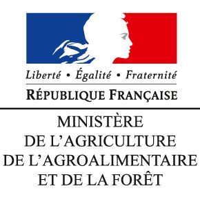logo-ministère-agriculture-agroalimentaire-forêt1